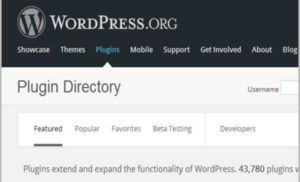 How To Choose Premium WordPress Plugins That Make Your Blog Addictive
