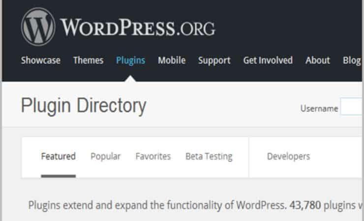 How To Choose Premium WordPress Plugins That Make Your Blog Addictive